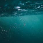 Fondo del mar con microplásticos