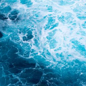 Océanos y mares son el pulmón del planeta